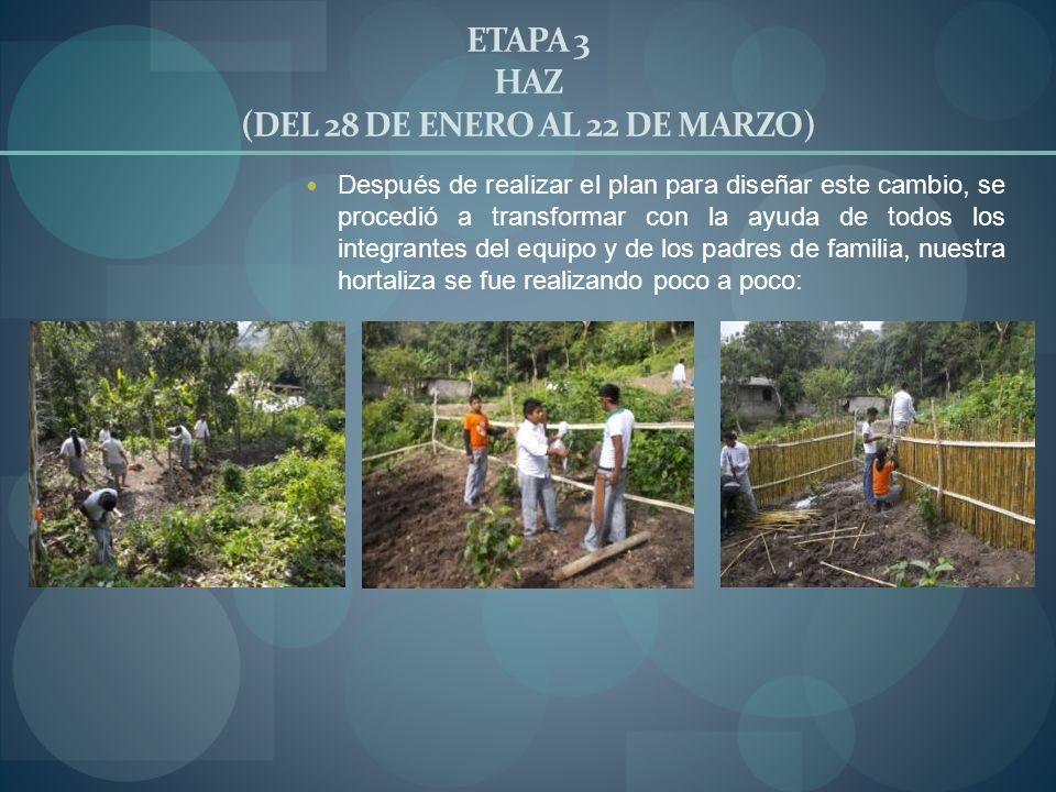 ETAPA 3 HAZ (DEL 28 DE ENERO AL 22 DE MARZO) Después de realizar el plan para diseñar este cambio, se procedió a transformar con la ayuda de todos los