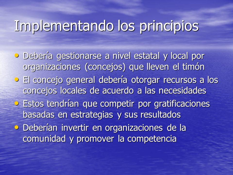Implementando los principios Debería gestionarse a nivel estatal y local por organizaciones (concejos) que lleven el timón Debería gestionarse a nivel