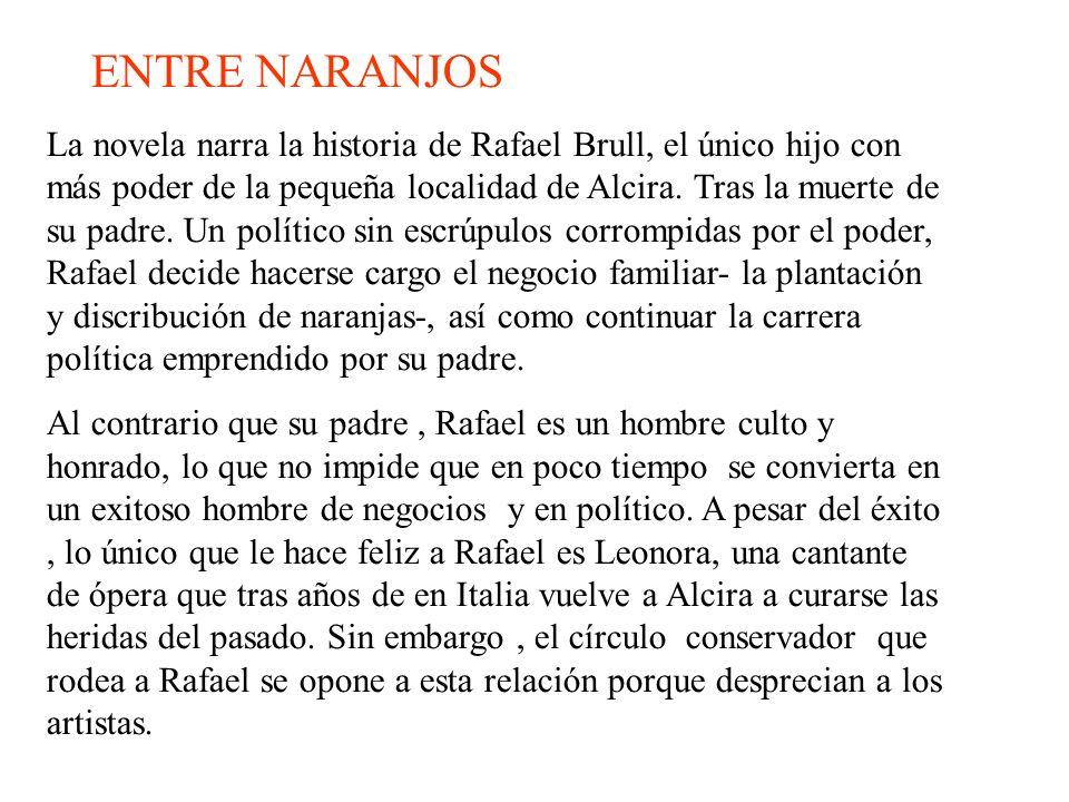 La novela narra la historia de Rafael Brull, el único hijo con más poder de la pequeña localidad de Alcira. Tras la muerte de su padre. Un político si