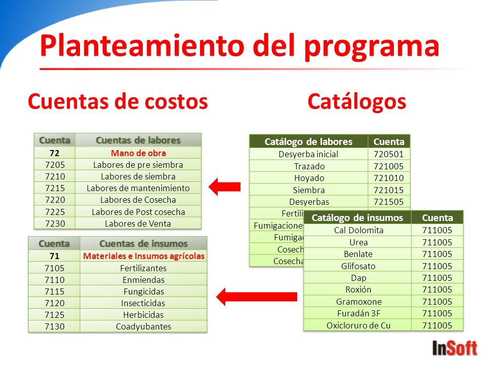 Cuentas de costosCatálogos Planteamiento del programa
