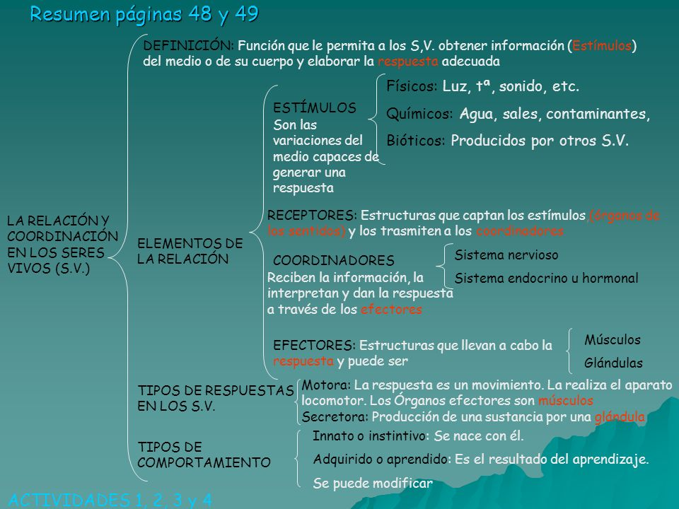 Resumen páginas 48 y 49 LA RELACIÓN Y COORDINACIÓN EN LOS SERES VIVOS (S.V.) DEFINICIÓN: Función que le permita a los S,V. obtener información (Estímu