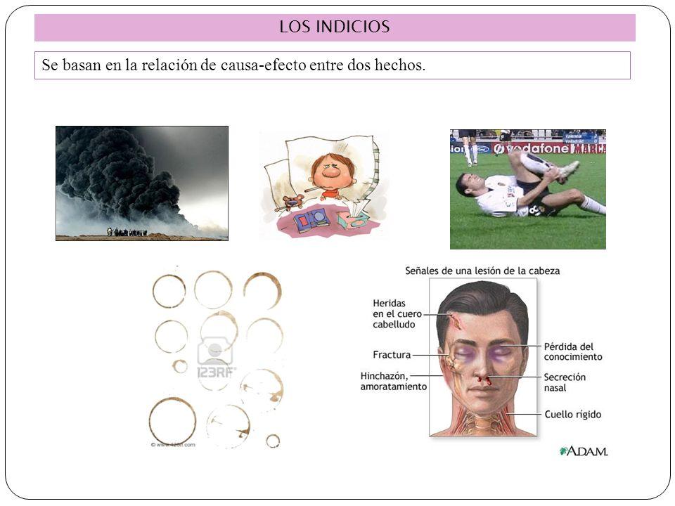 LOS INDICIOS Se basan en la relación de causa-efecto entre dos hechos. 18
