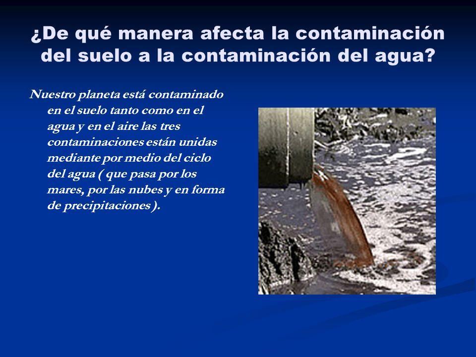 ¿De qué manera afecta la contaminación del suelo a la contaminación del agua? Nuestro planeta está contaminado en el suelo tanto como en el agua y en