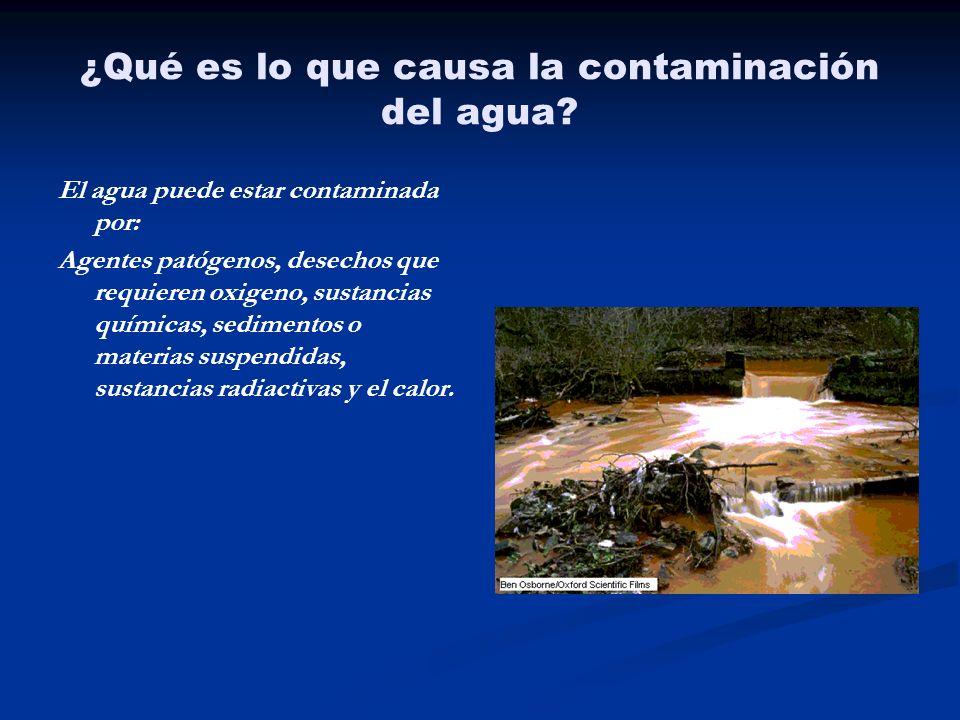 ¿Qué es lo que causa la contaminación del agua? El agua puede estar contaminada por: Agentes patógenos, desechos que requieren oxigeno, sustancias quí