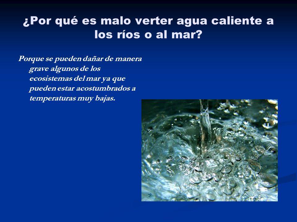 ¿Por qué es malo verter agua caliente a los ríos o al mar? Porque se pueden dañar de manera grave algunos de los ecosistemas del mar ya que pueden est