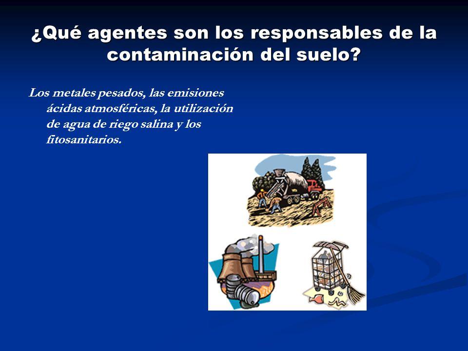 ¿Qué agentes son los responsables de la contaminación del suelo? Los metales pesados, las emisiones ácidas atmosféricas, la utilización de agua de rie