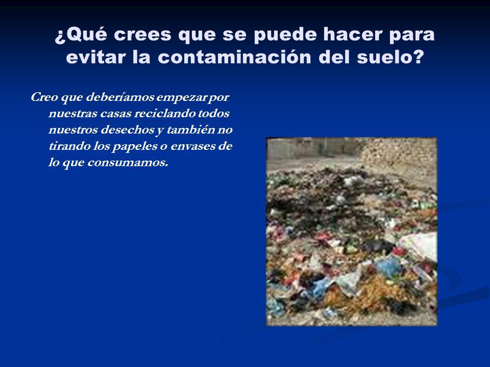 ¿Qué crees que se puede hacer para evitar la contaminación del suelo? Creo que deberíamos empezar por nuestras casas reciclando todos nuestros desecho