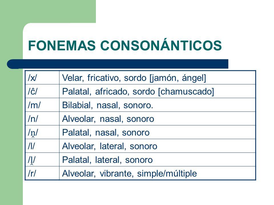 FONEMAS CONSONÁNTICOS /x/Velar, fricativo, sordo [jamón, ángel] /ĉ/Palatal, africado, sordo [chamuscado] /m/Bilabial, nasal, sonoro. /n/Alveolar, nasa