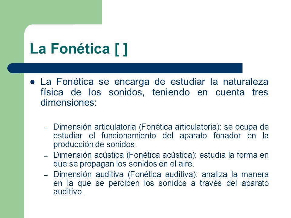 La Fonética [ ] La Fonética se encarga de estudiar la naturaleza física de los sonidos, teniendo en cuenta tres dimensiones: – Dimensión articulatoria