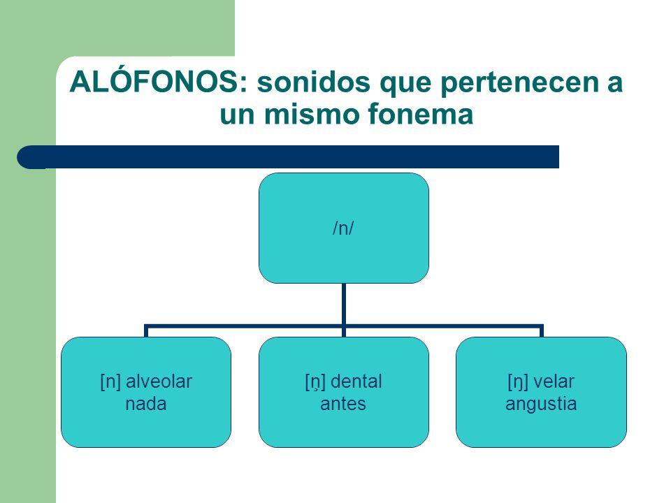 ALÓFONOS: sonidos que pertenecen a un mismo fonema /n/ [n] alveolar nada [ņ] dental antes [ŋ] velar angustia