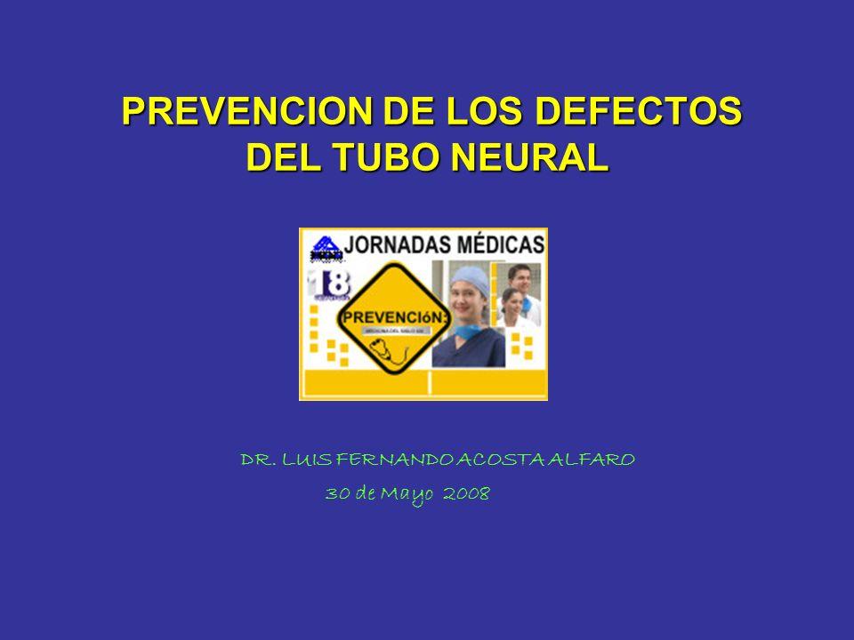 PREVENCION DE LOS DEFECTOS DEL TUBO NEURAL PREVENCION DE LOS DEFECTOS DEL TUBO NEURAL DR. LUIS FERNANDO ACOSTA ALFARO 30 de Mayo 2008