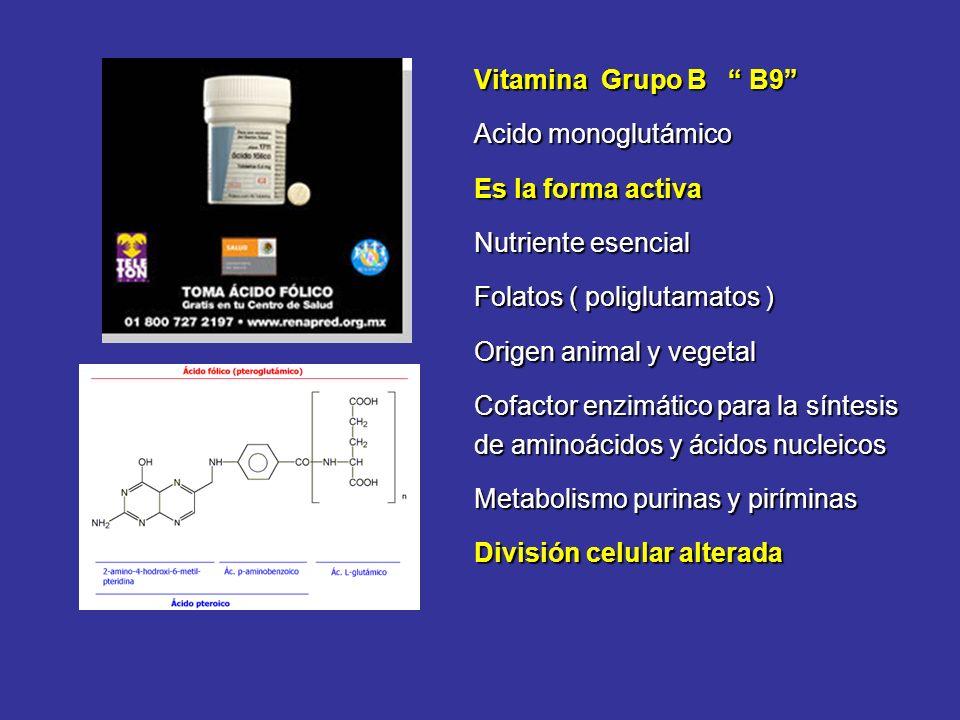 Vitamina Grupo B B9 Acido monoglutámico Es la forma activa Nutriente esencial Folatos ( poliglutamatos ) Origen animal y vegetal Cofactor enzimático p