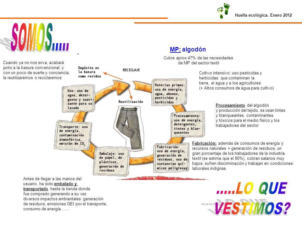 Huella ecológica. Enero 2012 MP: algodón Cubre aprox 47% de las necesidades de MP del sector textil Cultivo intensivo: uso pesticidas y herbicidas que
