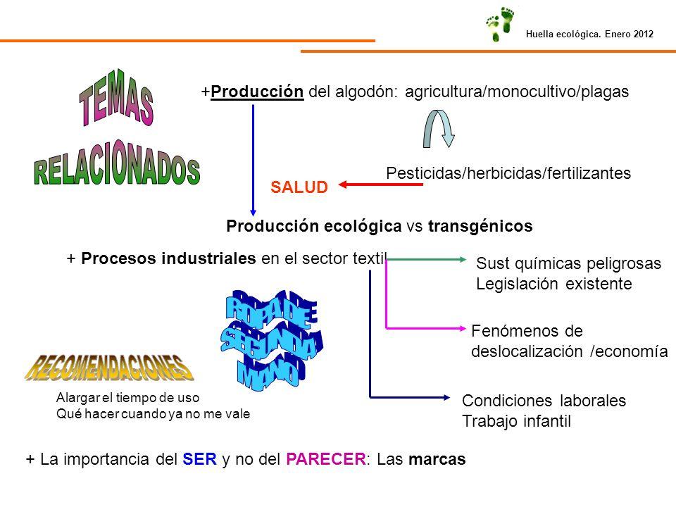 Huella ecológica. Enero 2012 +Producción del algodón: agricultura/monocultivo/plagas Pesticidas/herbicidas/fertilizantes SALUD Producción ecológica vs