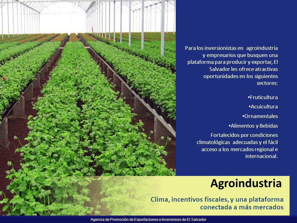 Agencia de Promoción de Exportaciones e Inversiones de El Salvador Para los inversionistas en agroindustria y empresarios que busquen una plataforma p