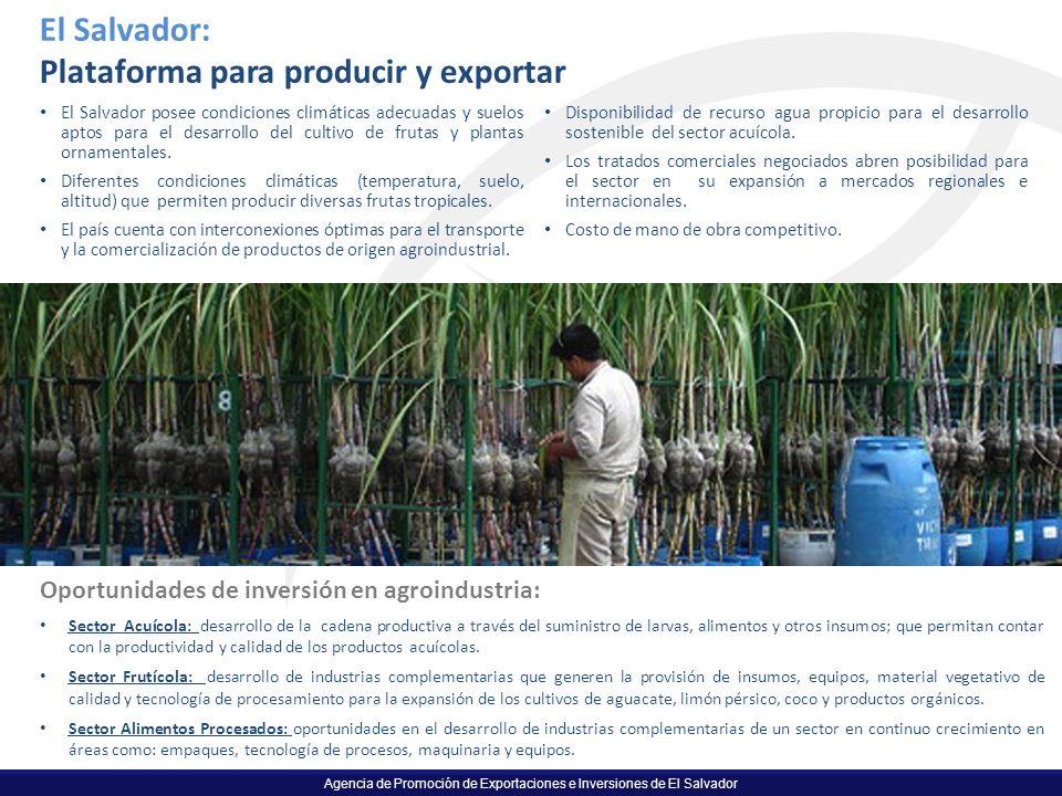 Agencia de Promoción de Exportaciones e Inversiones de El Salvador El Salvador: Plataforma para producir y exportar El Salvador posee condiciones clim
