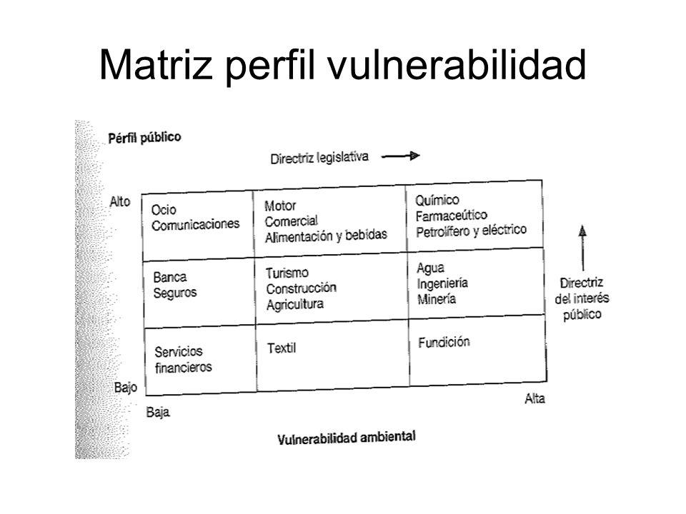 Matriz perfil vulnerabilidad