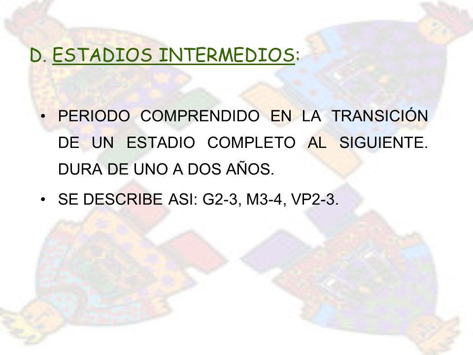 D. ESTADIOS INTERMEDIOS: PERIODO COMPRENDIDO EN LA TRANSICIÓN DE UN ESTADIO COMPLETO AL SIGUIENTE. DURA DE UNO A DOS AÑOS. SE DESCRIBE ASI: G2-3, M3-4