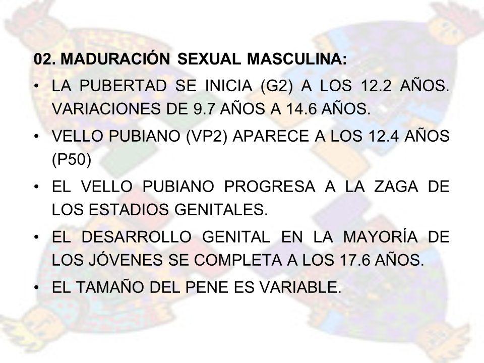 02. MADURACIÓN SEXUAL MASCULINA: LA PUBERTAD SE INICIA (G2) A LOS 12.2 AÑOS. VARIACIONES DE 9.7 AÑOS A 14.6 AÑOS. VELLO PUBIANO (VP2) APARECE A LOS 12