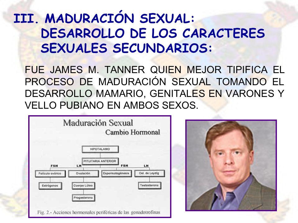 III. MADURACIÓN SEXUAL: DESARROLLO DE LOS CARACTERES SEXUALES SECUNDARIOS: FUE JAMES M. TANNER QUIEN MEJOR TIPIFICA EL PROCESO DE MADURACIÓN SEXUAL TO