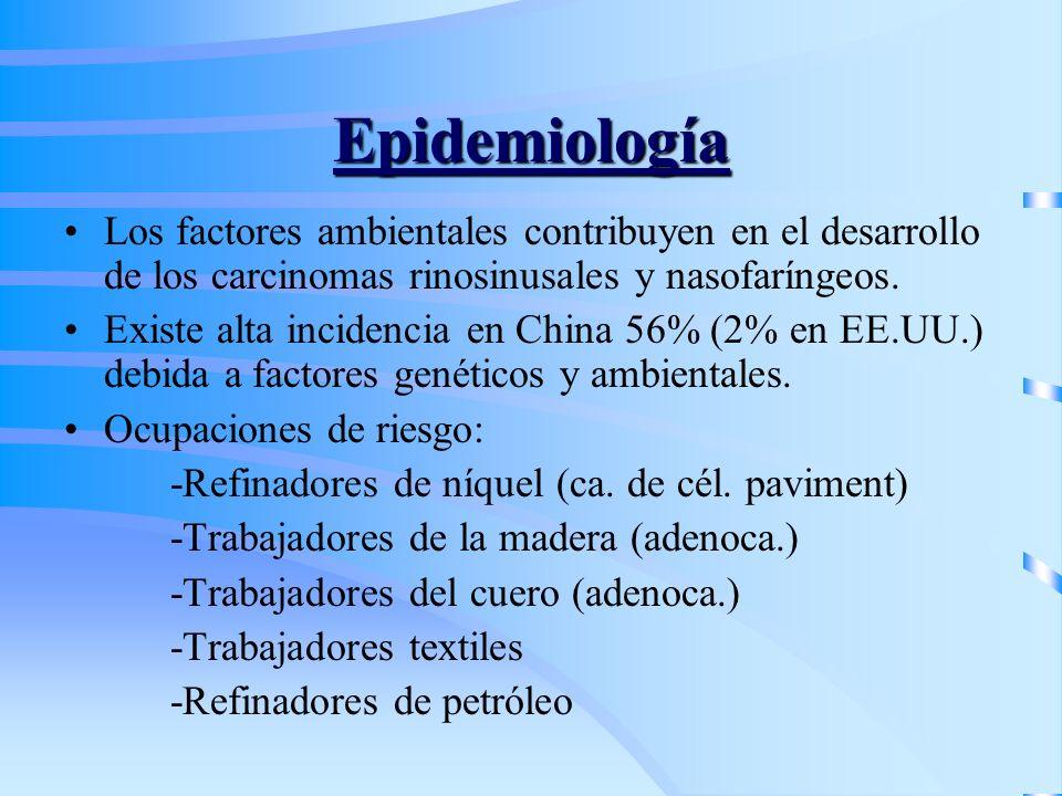 Epidemiología Los factores ambientales contribuyen en el desarrollo de los carcinomas rinosinusales y nasofaríngeos. Existe alta incidencia en China 5