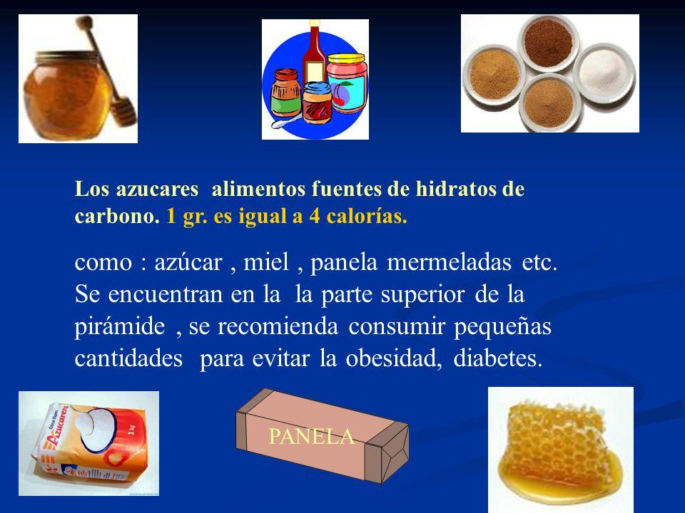 Alimentos fuentes de carbohidratos Las personas mas activas pueden consumir mayor cantidad de alimentos de este grupo El consumo excesivo de estos ali