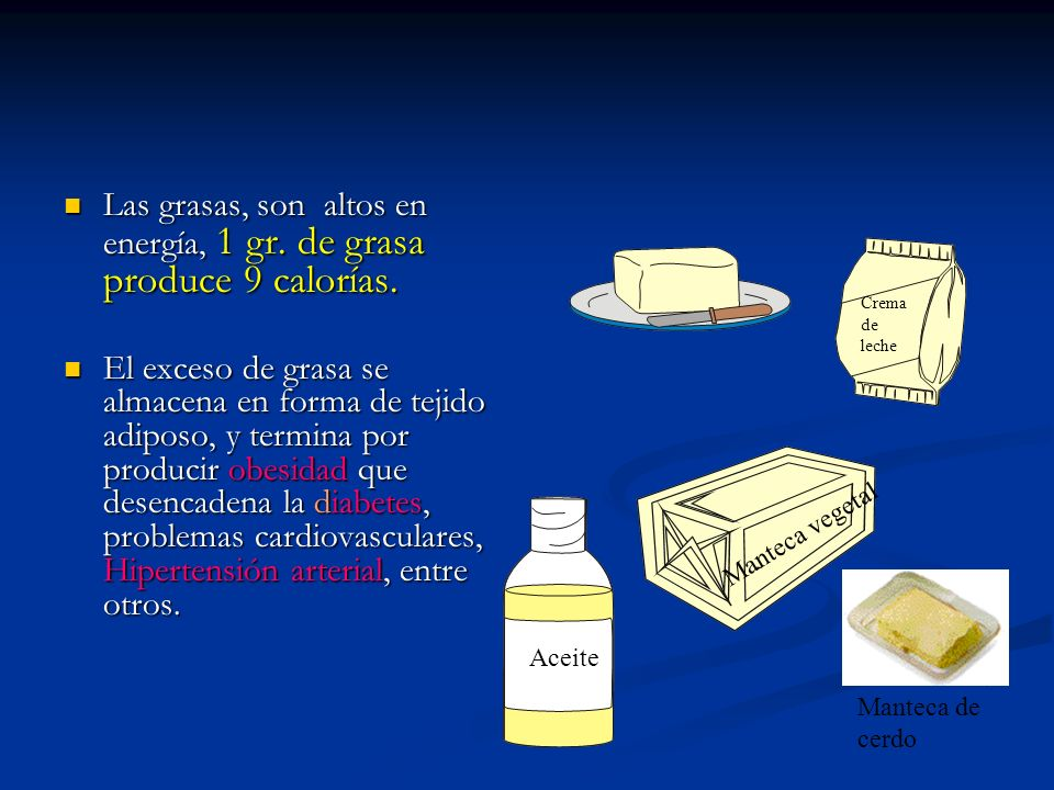 Para mantener una buena salud, se recomienda consumir muy poca cantidad de grasas de origen animal por su alto contenido de ácidos grasas saturadas y