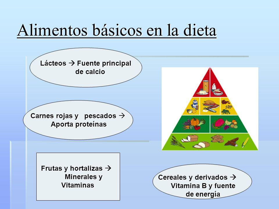 Recomendaciones Dieta sana y variada Dieta sana y variada Suplemento vitamínico rico en calcio Suplemento vitamínico rico en calcio 500 calorías extras 500 calorías extras Líquidos.