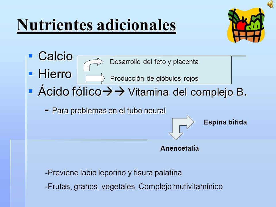 Nutrientes adicionales Calcio Calcio Hierro Hierro Ácido fólico Vitamina del complejo B.
