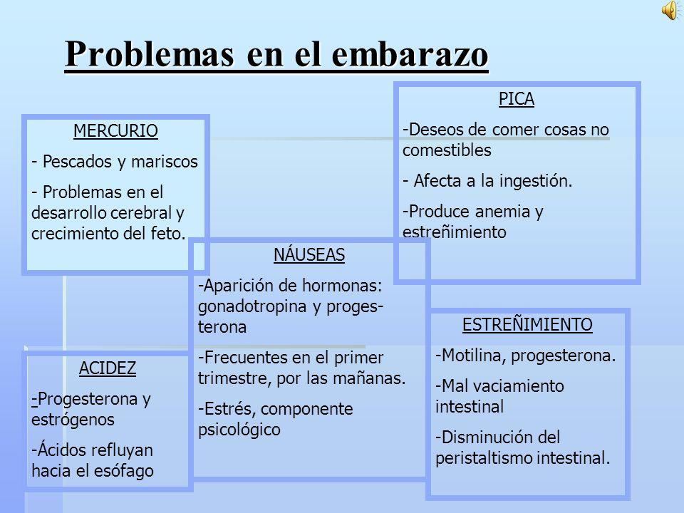 Problemas en el embarazo MERCURIO - Pescados y mariscos - Problemas en el desarrollo cerebral y crecimiento del feto.