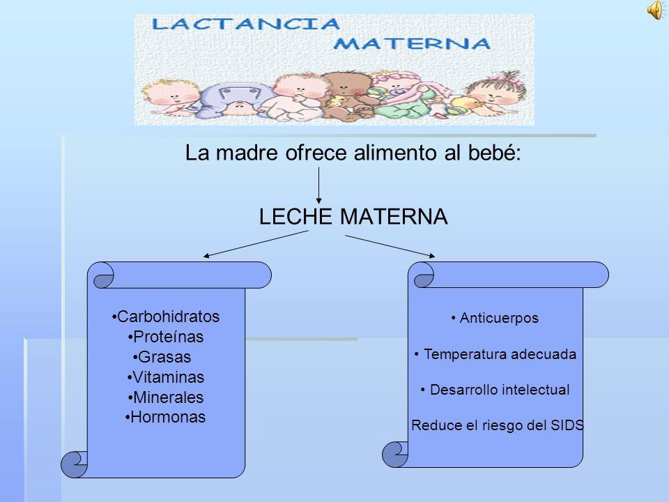 La madre ofrece alimento al bebé: LECHE MATERNA Carbohidratos Proteínas Grasas Vitaminas Minerales Hormonas Anticuerpos Temperatura adecuada Desarrollo intelectual Reduce el riesgo del SIDS