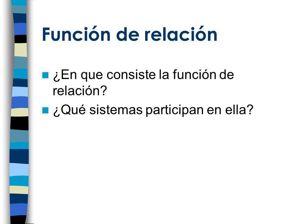 Función de relación La función de relación consiste en un conjunto de procesos encaminados a: –Adaptación del organismo a las cambiantes condiciones tanto externas como internas.