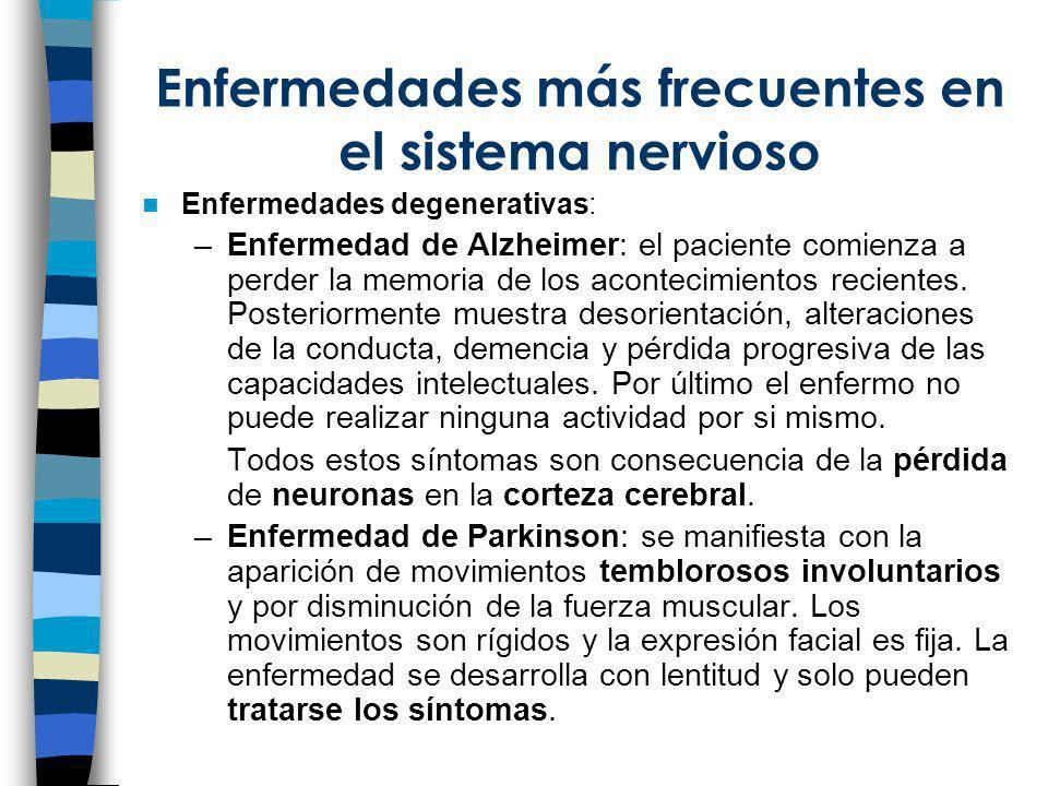 Enfermedades más frecuentes en el sistema nervioso Enfermedades degenerativas: –Enfermedad de Alzheimer: el paciente comienza a perder la memoria de l