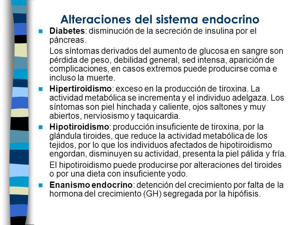 Alteraciones del sistema endocrino Diabetes: disminución de la secreción de insulina por el páncreas. Los síntomas derivados del aumento de glucosa en