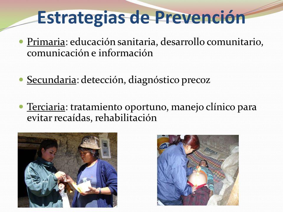 Prevención: tipo de interventores Primaria: profesionales de SP y comunidad Secundaria: Profesionales de S.P. y clínicos. Terciaria: clínicos, comunit