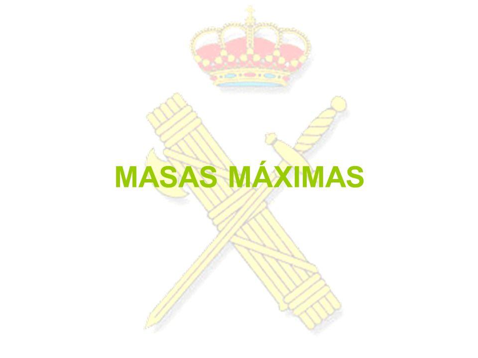 MASAS MÁXIMAS