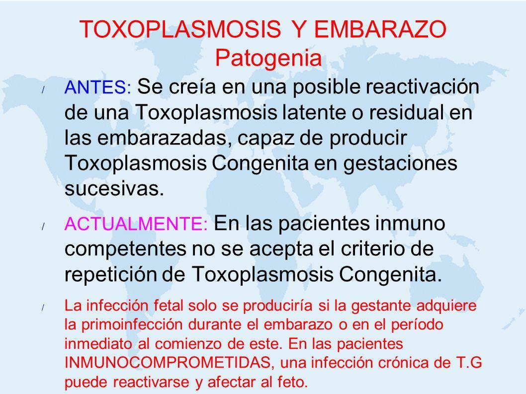 TOXOPLASMOSIS Y EMBARAZO Patogenia ANTES: Se creía en una posible reactivación de una Toxoplasmosis latente o residual en las embarazadas, capaz de pr