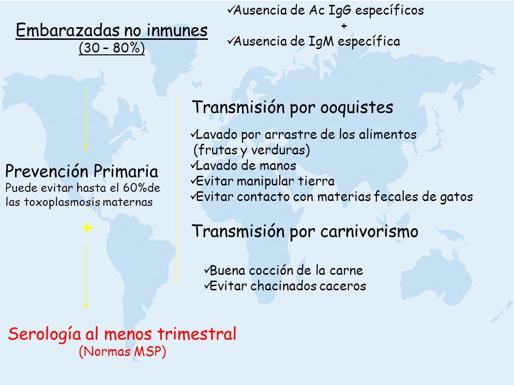 Embarazadas no inmunes (30 – 80%) Prevención Primaria Puede evitar hasta el 60%de las toxoplasmosis maternas Ausencia de Ac IgG específicos + Ausencia