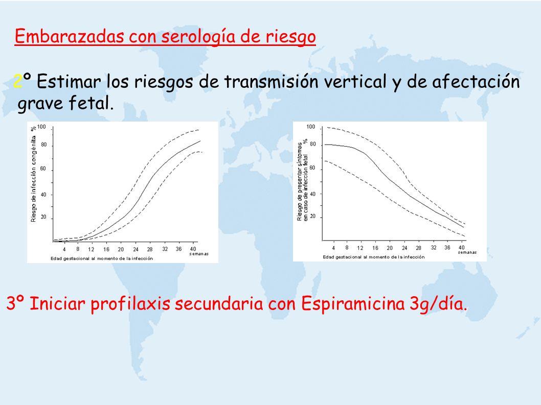 3º Iniciar profilaxis secundaria con Espiramicina 3g/día. 2º Estimar los riesgos de transmisión vertical y de afectación grave fetal. Embarazadas con