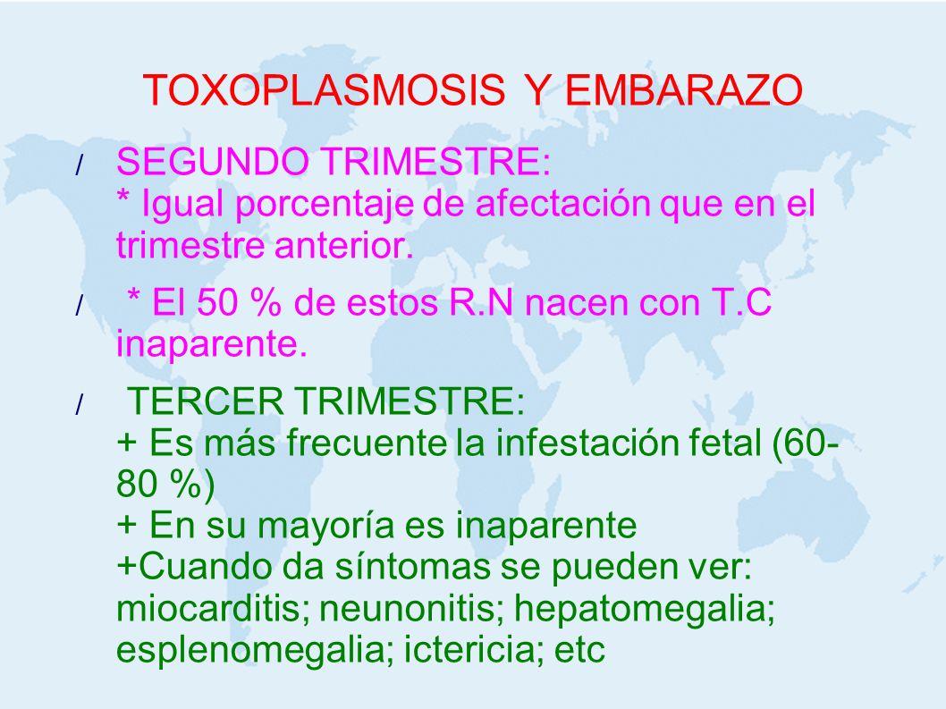 TOXOPLASMOSIS Y EMBARAZO SEGUNDO TRIMESTRE: * Igual porcentaje de afectación que en el trimestre anterior. * El 50 % de estos R.N nacen con T.C inapar