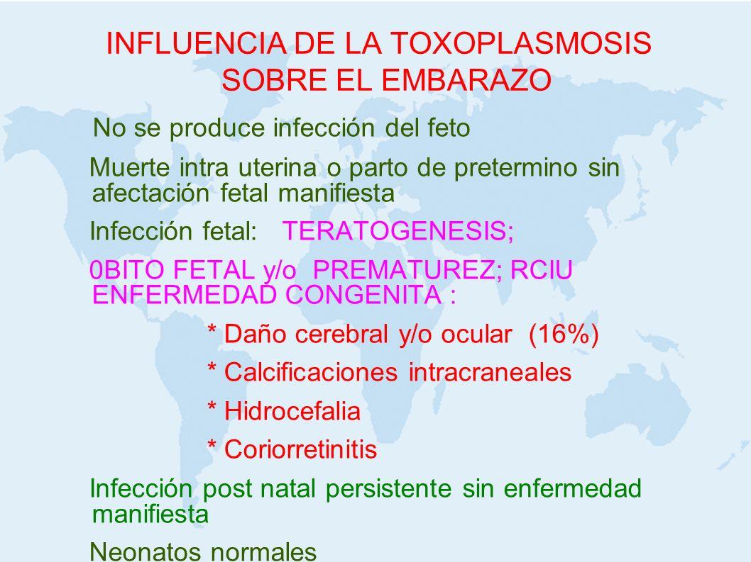 INFLUENCIA DE LA TOXOPLASMOSIS SOBRE EL EMBARAZO No se produce infección del feto Muerte intra uterina o parto de pretermino sin afectación fetal mani