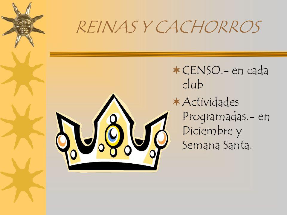REINAS Y CACHORROS CENSO.- en cada club Actividades Programadas.- en Diciembre y Semana Santa.