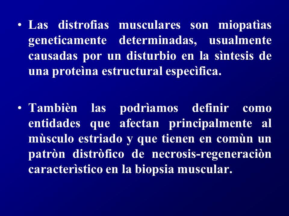 La mayor parte de las distrofias tienen como causa anormalidades que involucran a las llamadas proteìnas estructurales.