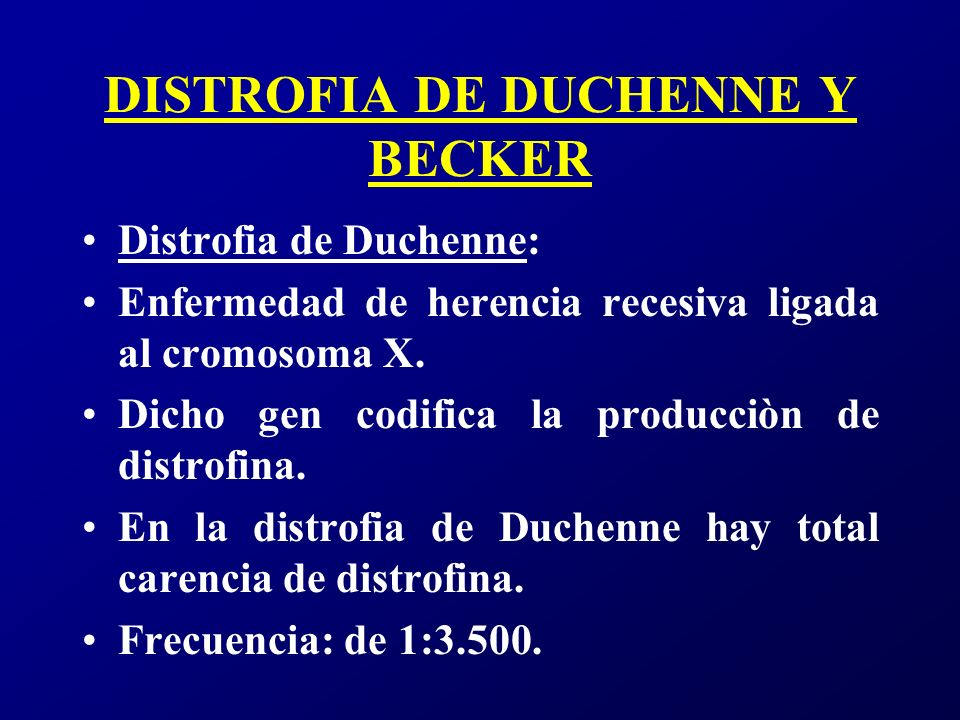 DISTROFIA DE DUCHENNE Y BECKER Comienza entre los 2 y 4 años con retraso motor (40%), marcha anormal (30%), transtorno del lenguaje y el habla (8%).