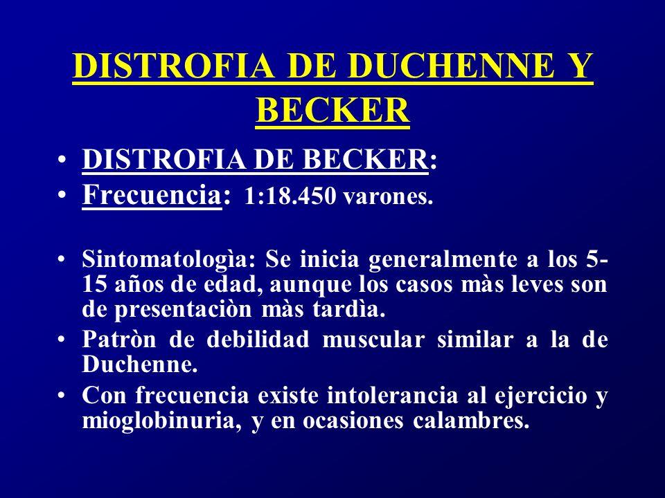DISTROFIA DE DUCHENNE Y BECKER La clìnica es menos grave que en la forma Duchenne y los pacientes pierden la deambulaciòn unos 16 años despuès del comienzo de la enfermedad o incluso màs tardiamente.