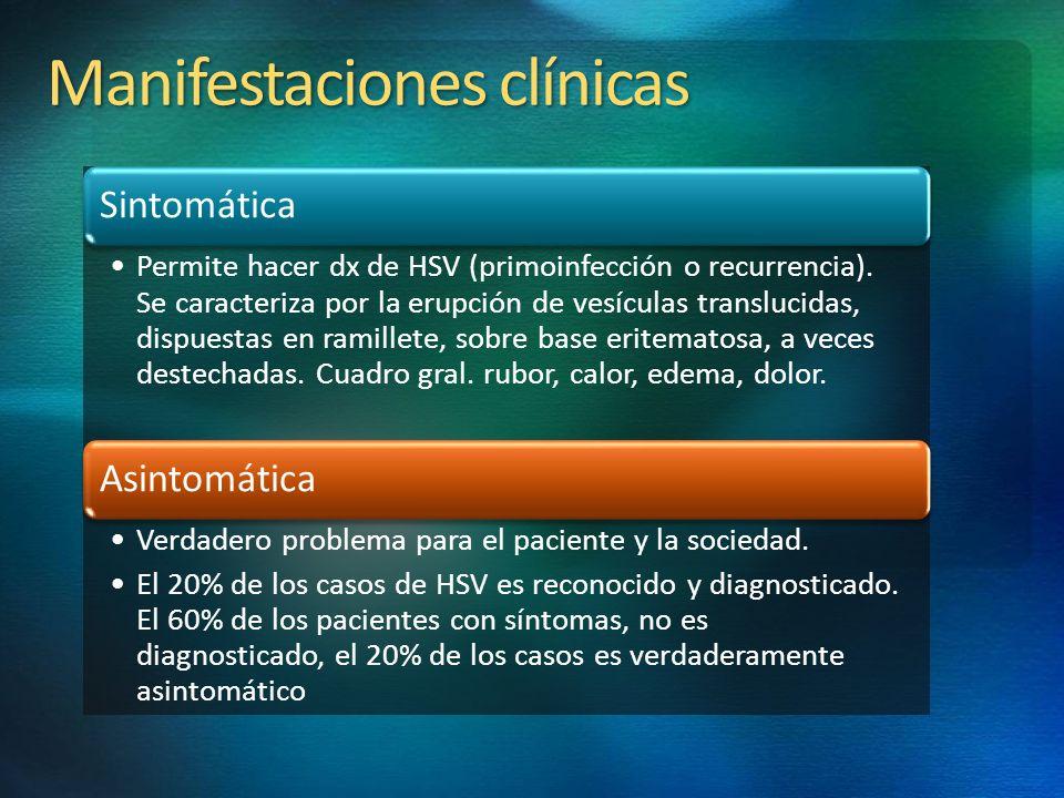 Manifestaciones clínicas Sintomática Permite hacer dx de HSV (primoinfección o recurrencia). Se caracteriza por la erupción de vesículas translucidas,