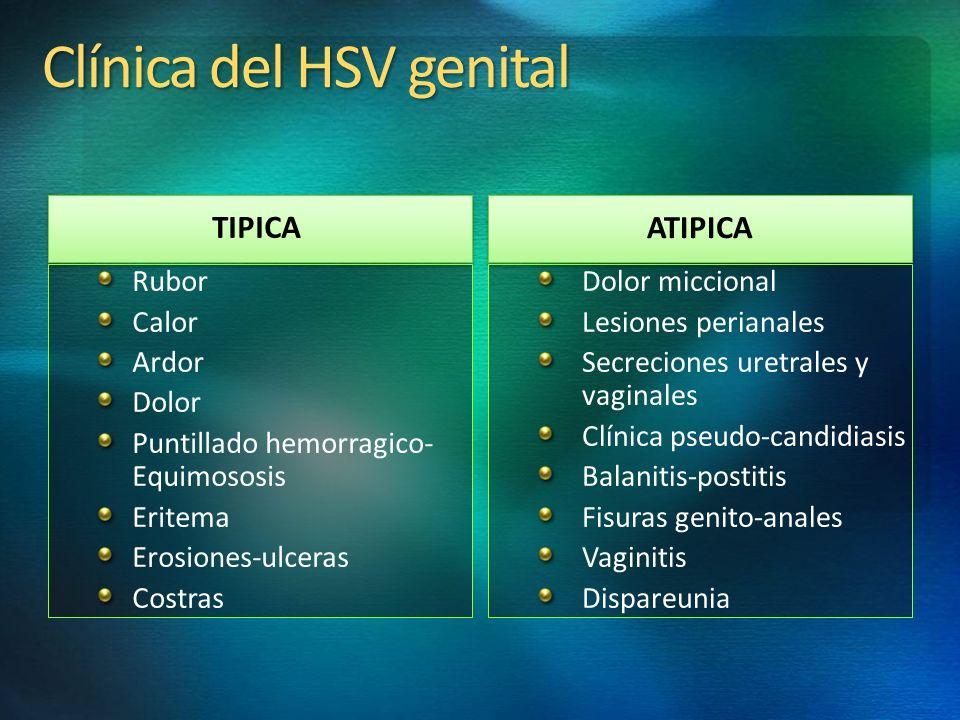 Clínica del HSV genital TIPICA ATIPICA Rubor Calor Ardor Dolor Puntillado hemorragico- Equimososis Eritema Erosiones-ulceras Costras Dolor miccional L