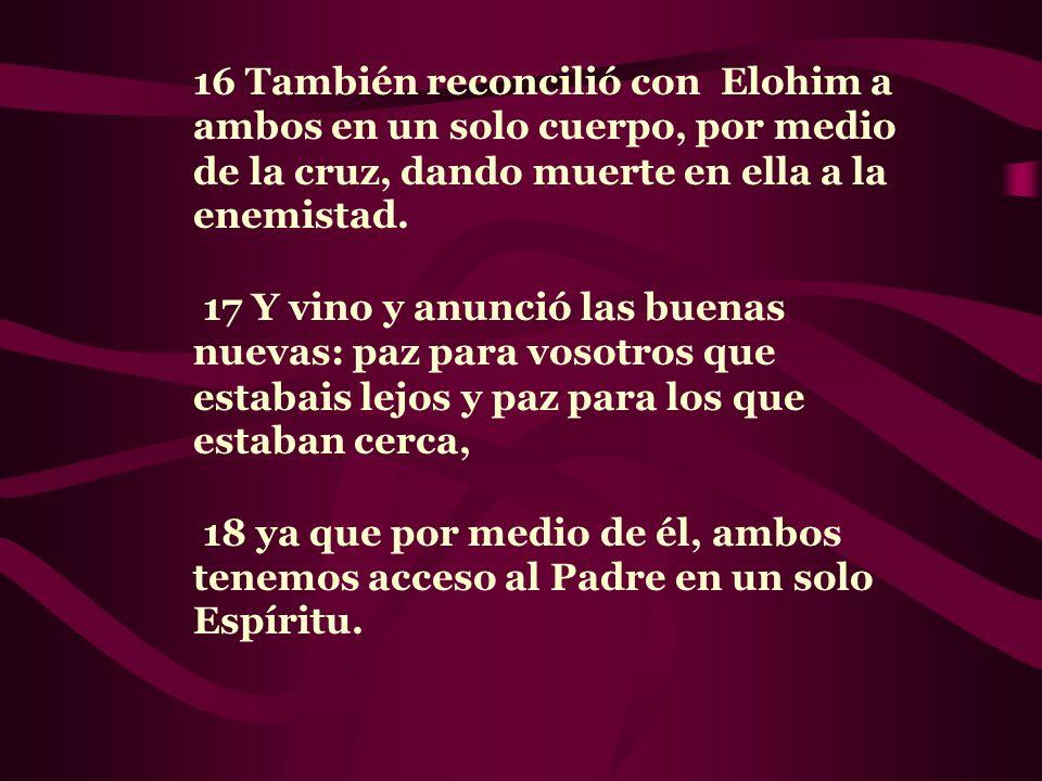 16 También reconcilió con Elohim a ambos en un solo cuerpo, por medio de la cruz, dando muerte en ella a la enemistad. 17 Y vino y anunció las buenas