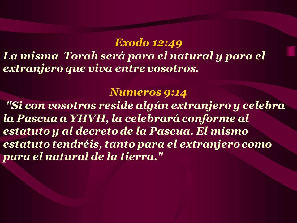 Exodo 12:49 La misma Torah será para el natural y para el extranjero que viva entre vosotros. Numeros 9:14