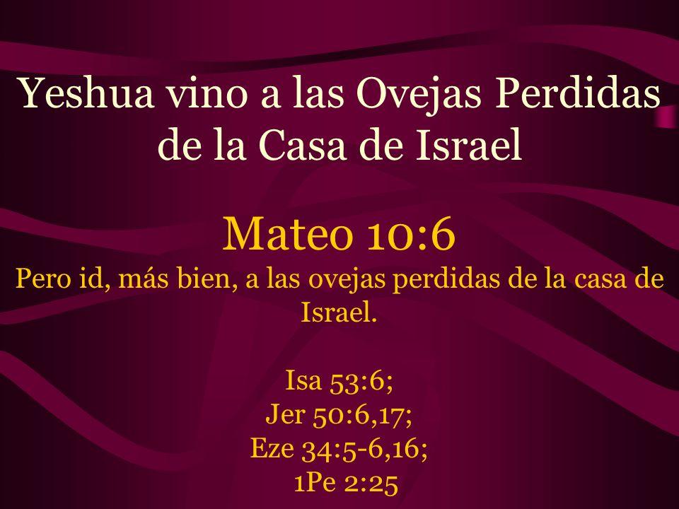 Yeshua vino a las Ovejas Perdidas de la Casa de Israel Mateo 10:6 Pero id, más bien, a las ovejas perdidas de la casa de Israel. Isa 53:6; Jer 50:6,17